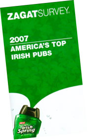 Irish pub guide