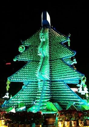 Chinese Beer Tree
